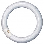 OSRAM - Ring-LS 22W/LF840 - Fluorescent ring lamp 22 Watt, WL13667