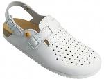 WARMBIER - 2550.79350.35 - ESD Clogs Ladies/Men Elektra, heel strap, white, size 35, WL33612