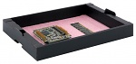 HANS KOLB - 05-CTR-AS - ESD tray stackable with pink foam, 351x246x31 mm, WL31519
