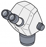 ZEISS - Stemi 305 cam - Stereo microscope 305 cam, WL32935